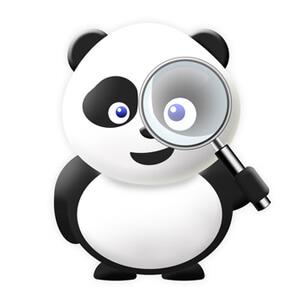 SEO Google Panda Update 4.0